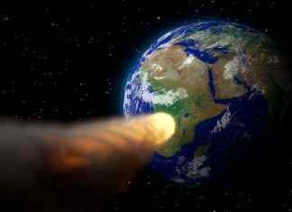 "NASA asteroid warning: Former top astronaut says an extinction-causing asteroid impact ""could happen"""